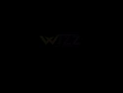 Boutiquewizz Logo